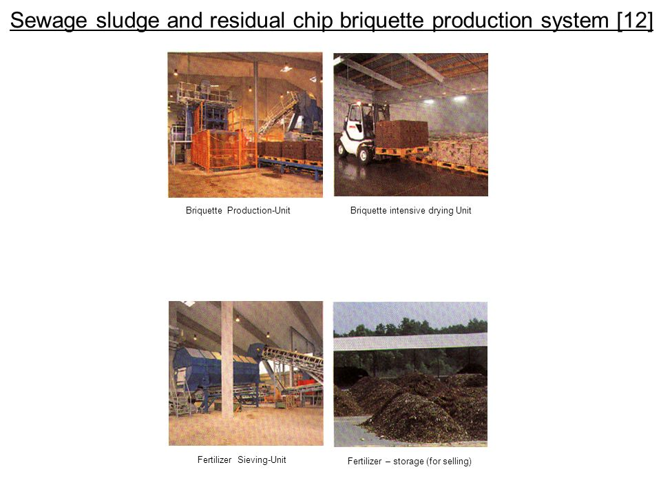 Sewage sludge and residual chip briquette production system [12]